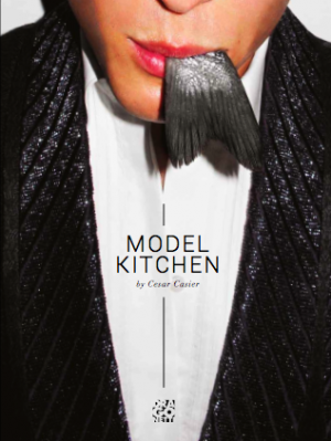 Model Kitchen by Cesar Casier